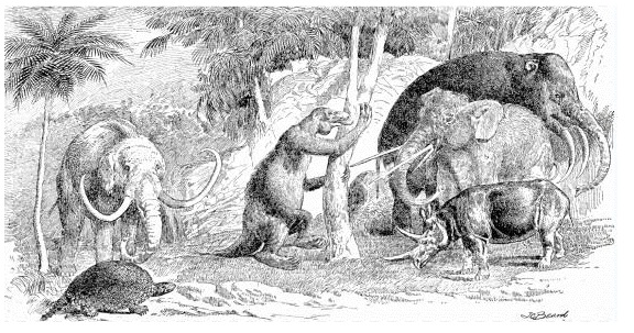cenozoic animals